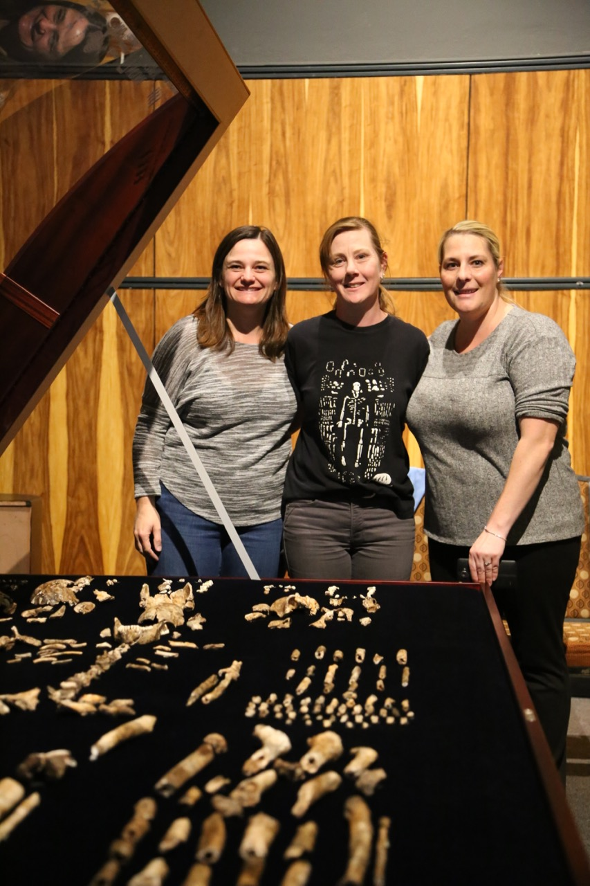 Maropeng, Display set up Homo naledi